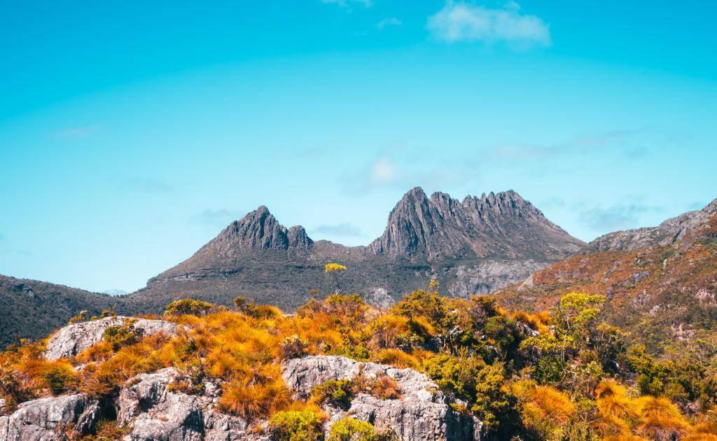 Tasmania hiking track