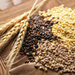 Black Wheat: Health Benefits