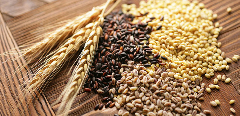 Black Wheat: Health Benefits and Practical Uses